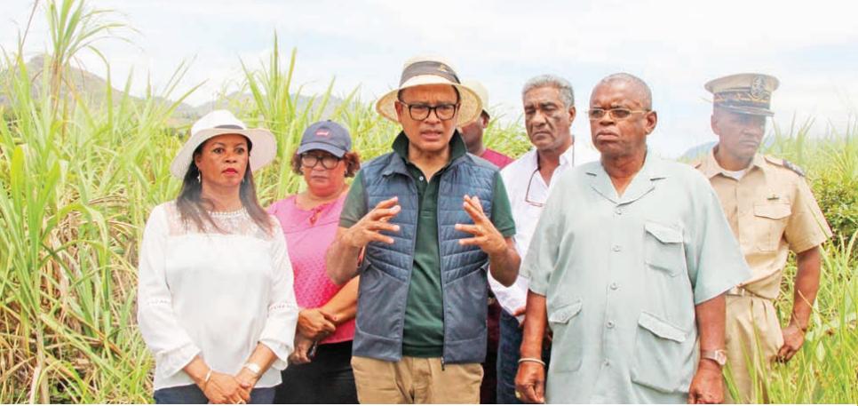 Zones pépinières industrielles – La sucrerie de Mahatalaky relancée
